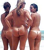 Big tan tails